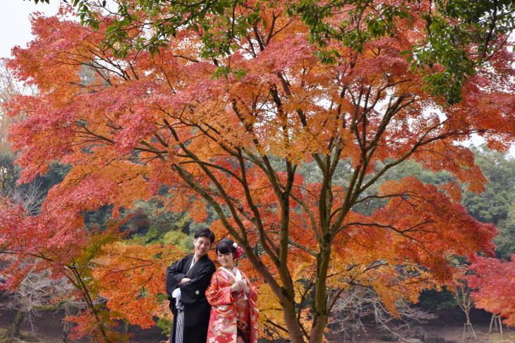 洋髪和装色打掛けで紅葉で前撮りの髪飾りや髪型ヘアスタイルの前撮り写真