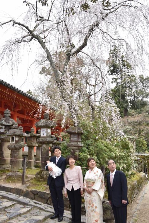 春日大社のお宮参りのデータ付きの記念写真