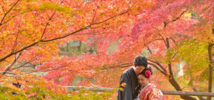 和装前撮り紅葉(2017.11.25)