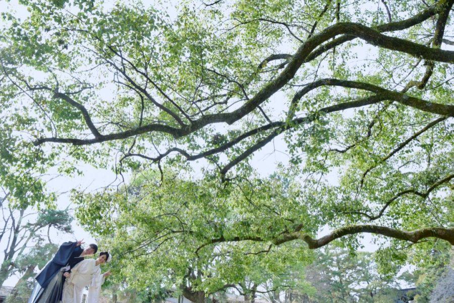 和装京都前撮りの写真