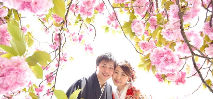 奈良の桜で前撮り