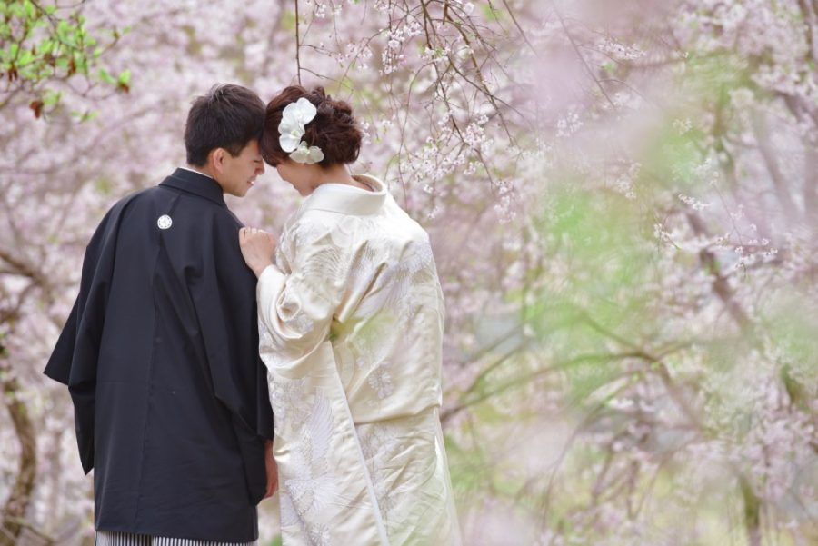 奈良で桜の菜の花の前撮りの写真