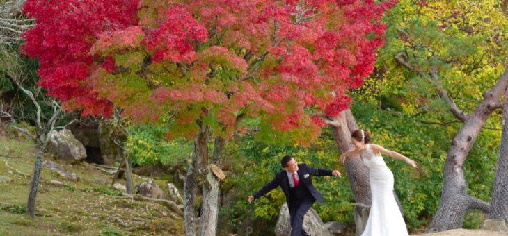 紅葉でドレスのロケーション撮影