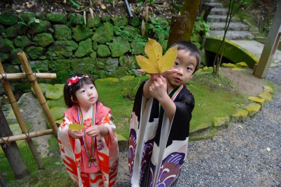 大神神社の七五三記念写真撮影