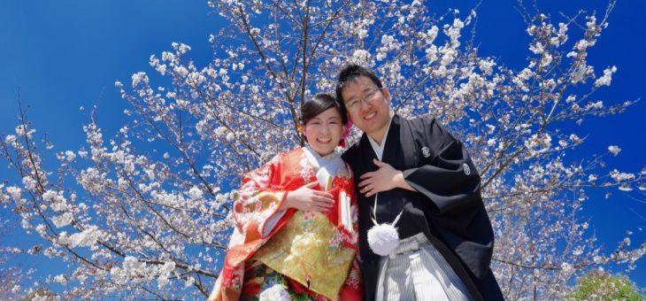菜の花と桜で前撮り(2019.4.4)
