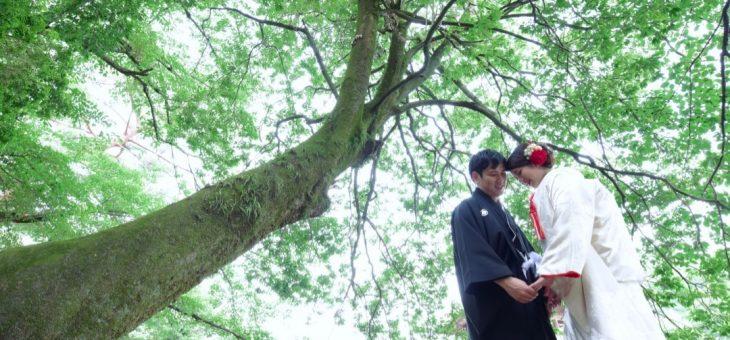 和装で奈良前撮り(2019.6.26)