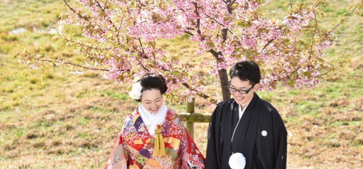 桜で和装前撮り