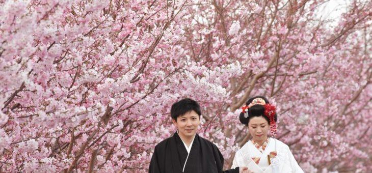 地毛で日本髪の和装前撮り