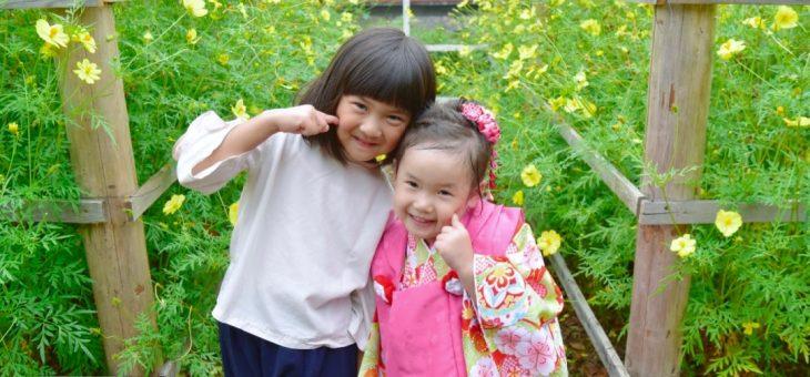 奈良県桜井市の安倍文殊院で雨の七五三