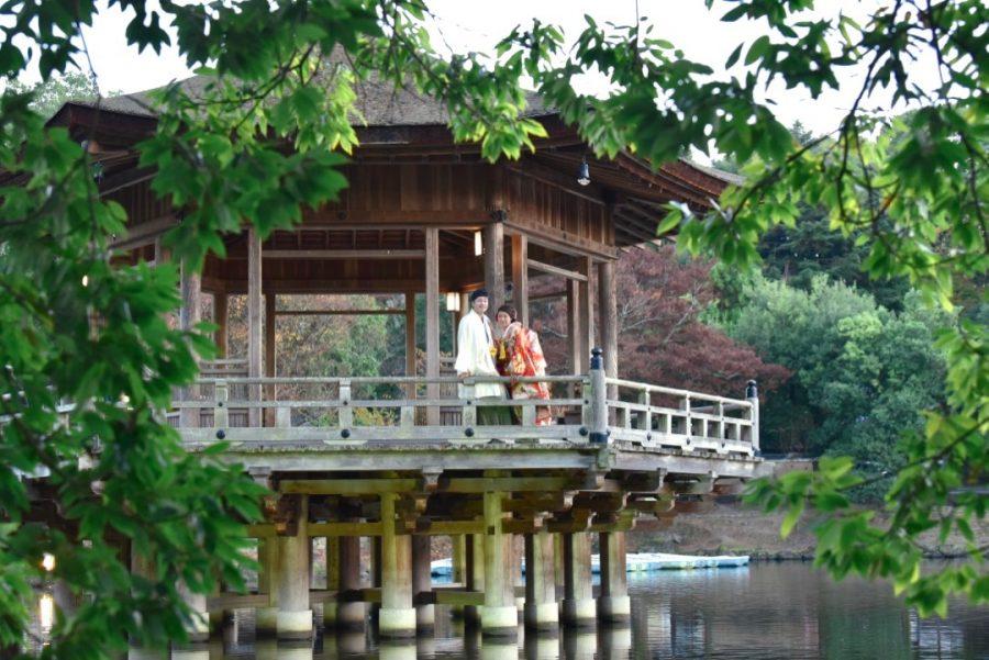 結婚式の前撮りを紅葉の奈良公園で撮影