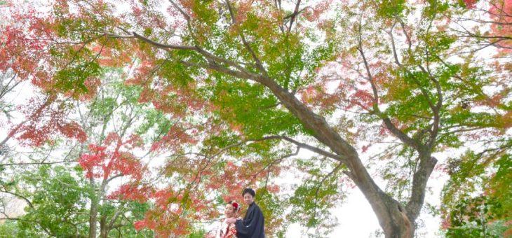 結婚式の前撮り(18.11.23)
