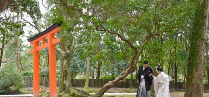 奈良の和装前撮り(2019.2.9)